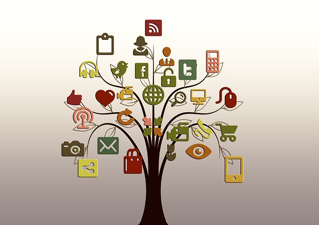 Measure The Value Of A Fan Or Follower In Social Media