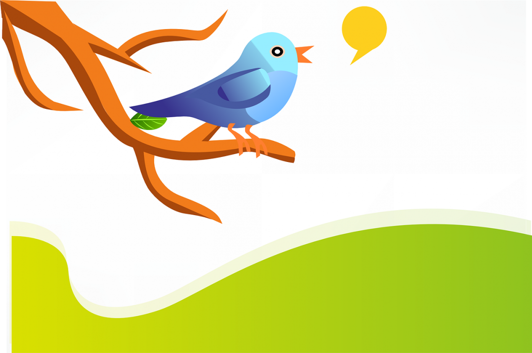 Twitter Study Shows How Mentions, Length, and Images Affect Engagement
